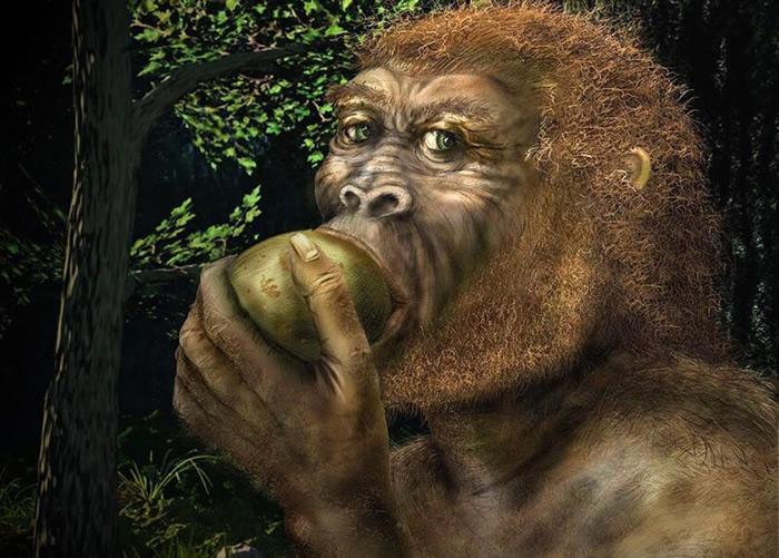 英国埃克塞特大学科学家:适应酒精曾使人类的祖先免于灭绝