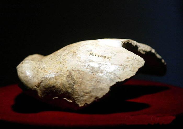 周口店龙骨山发现第一个头盖骨90年 北京猿人是我们的祖先吗?