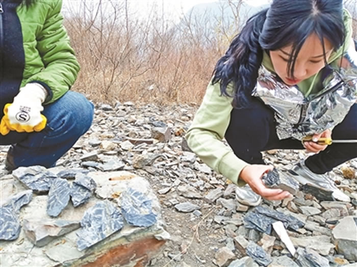 """化石爱好者到门头沟灰峪村""""寻宝"""" 更专业的""""化石猎人""""拥有店铺"""