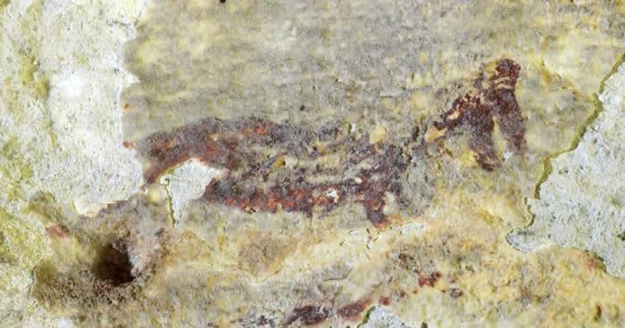 印尼苏拉威西岛洞穴发现4.4万年前叙述故事的壁画 半人半兽的生物手持矛猎杀动物