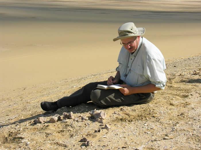 埃及沙漠发现的Aegicetus gehennae化石显示史前鲸鱼可能像鳄鱼一样波浪式游动