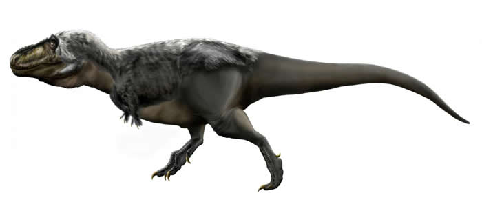 骨分析表明小号化石标本并非不同属的霸王龙:它们只是孩子
