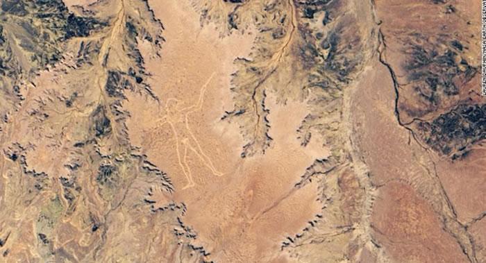 """NASA称澳大利亚菲尼斯高原神秘巨型线条画""""马"""