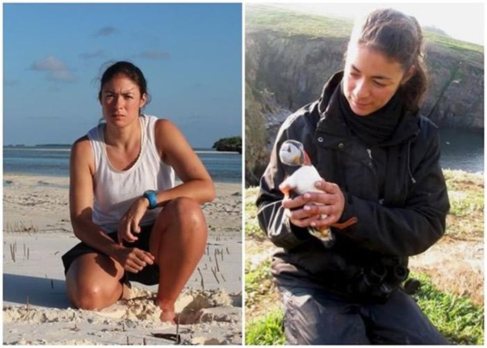英国生物学家首次观察到海鸟使用工具来护理身体:角嘴海雀叼树枝戳自己身体