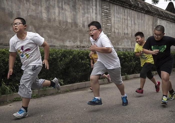 巴西圣保罗大学研究:肥胖儿童大脑区域受损或影响学业