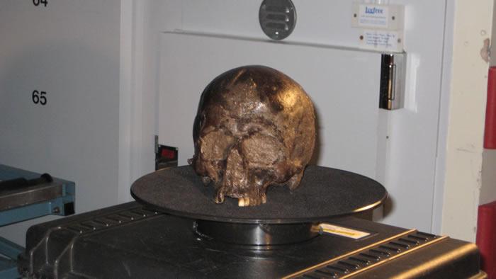 英国约克郡2600年前被杀古人颅骨内发现保存完好的神秘脑组织