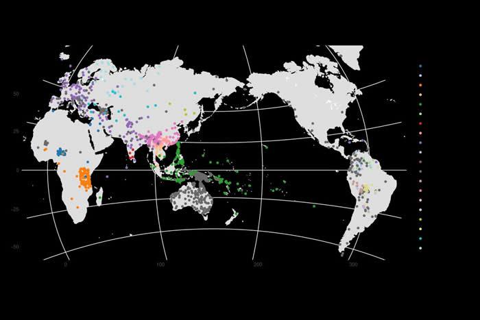 马克斯普朗克人类历史科学研究所发布最新版本的跨语言共词化数据库CLICS