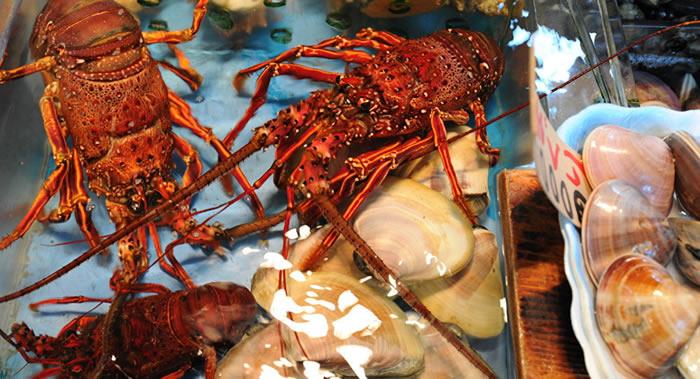 """《无脊椎动物病理学杂志》:找到消灭牡蛎寄生虫的""""银色杀手"""""""