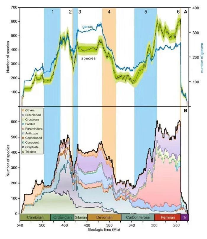 古生代海洋生物多样性演变曲线