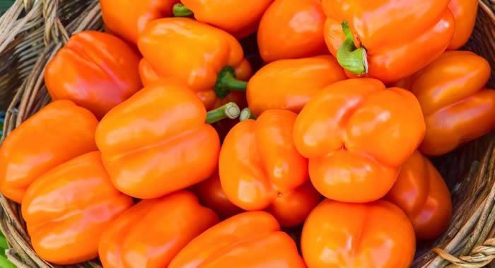 """类胡萝卜素有助改善皮肤状态 番茄所含的番茄红素比""""任何昂贵面霜""""都更有益"""