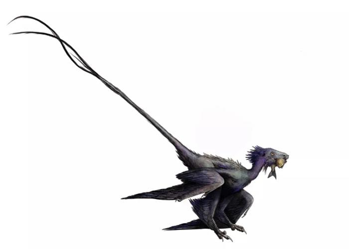 """袖珍""""舞龙""""Wulong bohaiensis化石为研究恐龙与鸟类之间的联系提供新思路"""