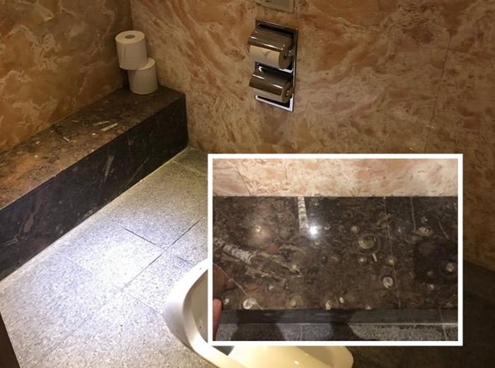 金泽站停车场男厕都有人发现化石。