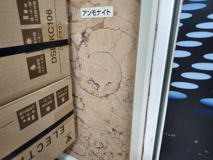 新宿东口一间百货公司大楼内,也有菊石的踪迹。