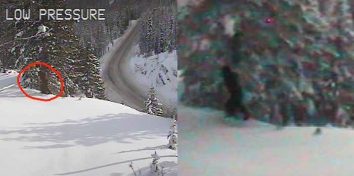 """美国华盛顿州运输部的网络摄像机在山区拍到疑似""""大脚怪""""身影"""