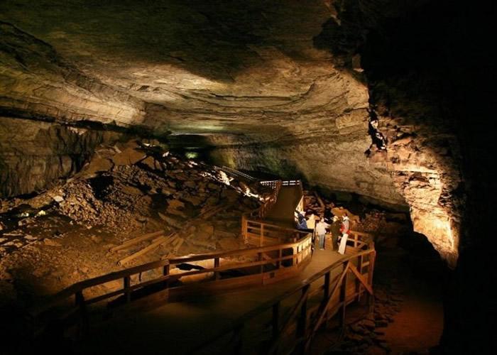 发现鲨鱼骨头化石的猛犸洞国家公园位于肯塔基州。