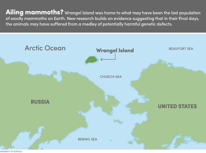 这张地图显示了最后幸存猛犸象的位置--弗兰格尔岛