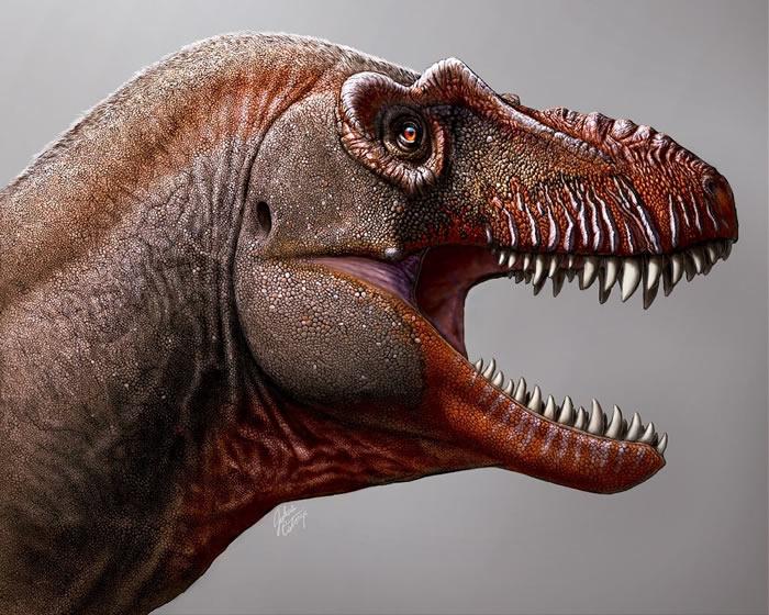 加拿大发现新霸王龙物种Thanatotheristes degrootorum 距今7950万前