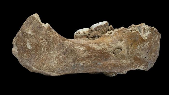 夏河丹尼索瓦人将青藏高原人类史前推12万年
