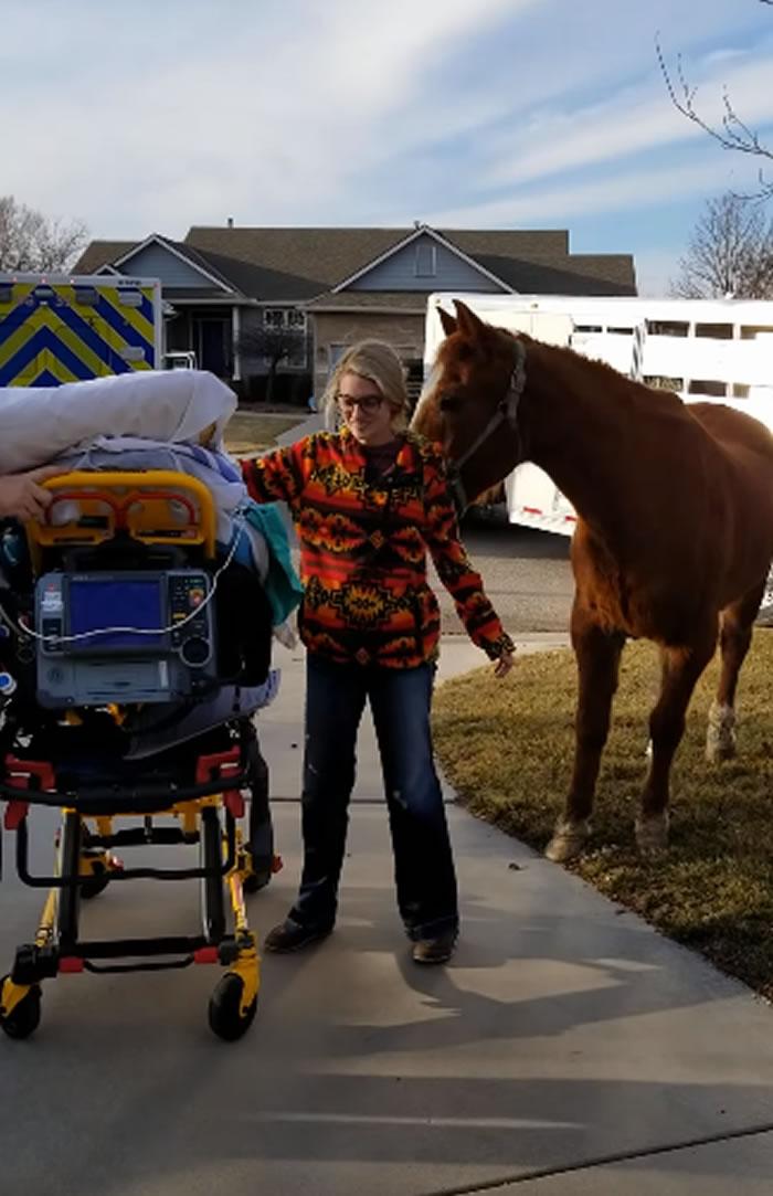 动容:美国堪萨斯州癌末牛仔见20年公马伙伴最后一面 圆梦隔天安详离世