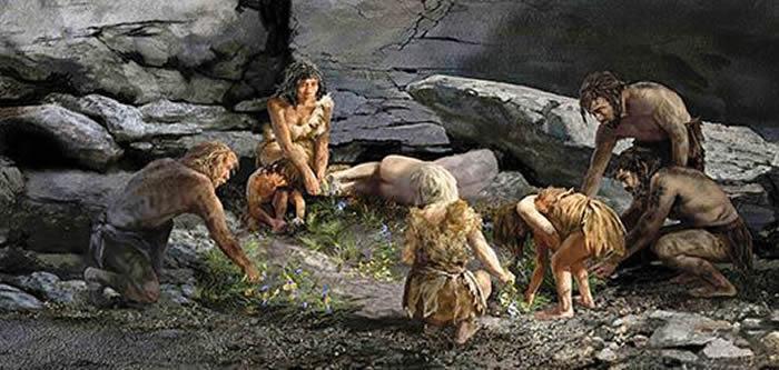 """伊拉克库尔德地区Shanidar Cave遗址中的遗骸再次引发""""尼安德特人的葬礼仪式""""的辩论"""