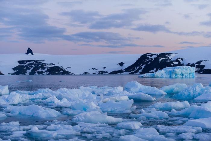 南极半岛今夏已出现了气温飙高的天气状况。 上图为乔治王岛。 PHOTOGRAPH BY ALESSANDRO DAHAN, GETTY IMAGES