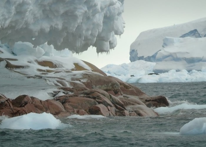 南极考察团队发现新岛屿希芙岛(Sif) 面积与英国温莎堡相若