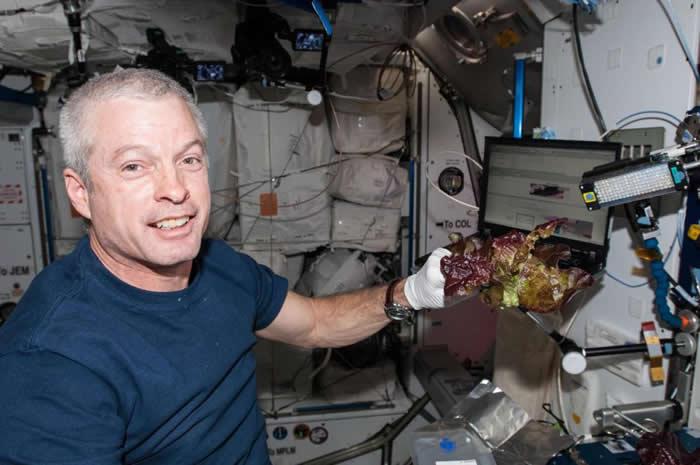 """国际空间站上种植的""""太空生菜""""营养价值与地球上生长的类似植物不相上下"""