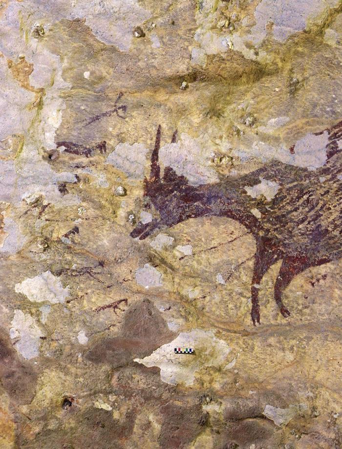 印尼南苏拉威西岛4.4万年前洞穴壁画因矿石开采或消失
