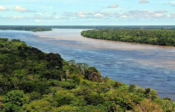 英国班戈大学研究指亚马逊热带雨林或在50年内崩溃 变成热带稀树大草原