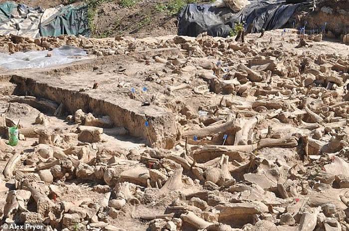 俄罗斯科斯捷尼基村发现2万年前冰河时代古人类遗址 用猛犸象骨头搭建房屋