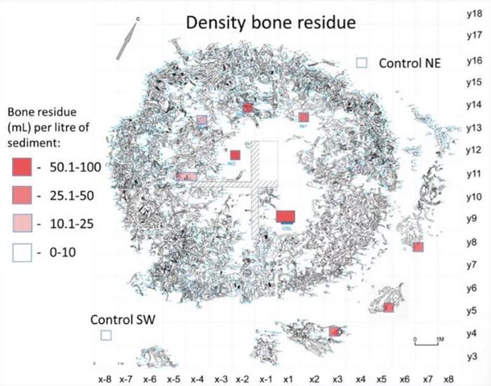 俄罗斯Kostenski 11挖掘地点发现由猛犸象骨头制成的神秘圆形结构