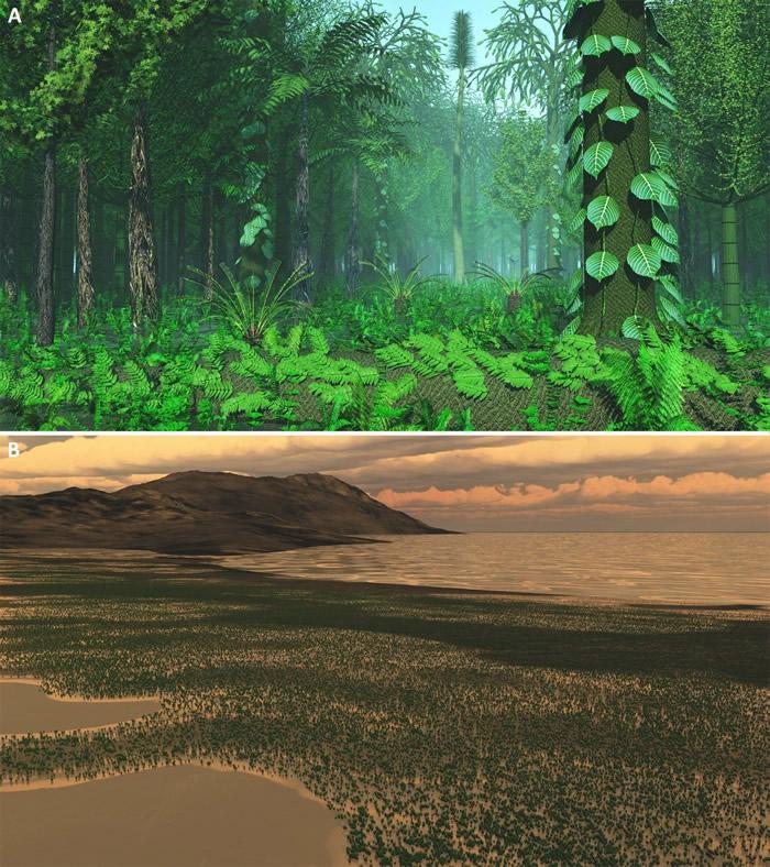 二叠纪末生物大灭绝事件与陆生植物演化研究取得重要进展