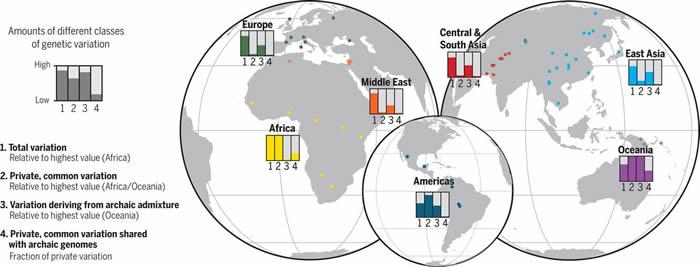DNA分析揭示非洲古人类种群的交融程度可能比人们认为的要高得多