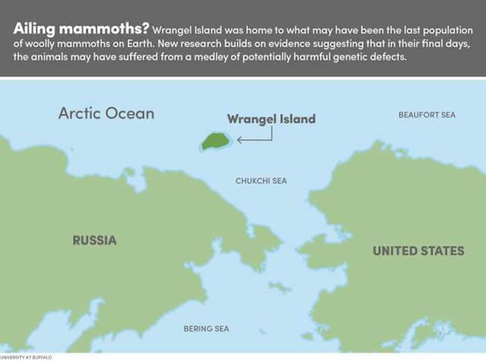 图中是弗兰格尔岛的位置,这是一个孤立偏远的岛屿环境,地球上最后一批猛犸在这里生存了下来,直到大约4000年前才消亡。