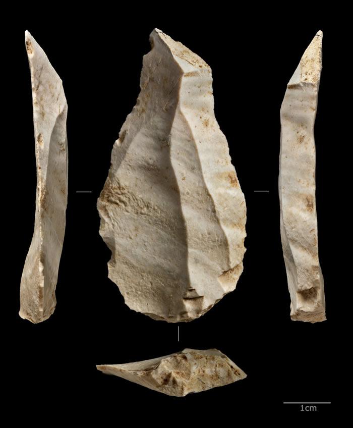 欧洲尼安德特人对海洋的依赖程度堪比非洲早期的现代人