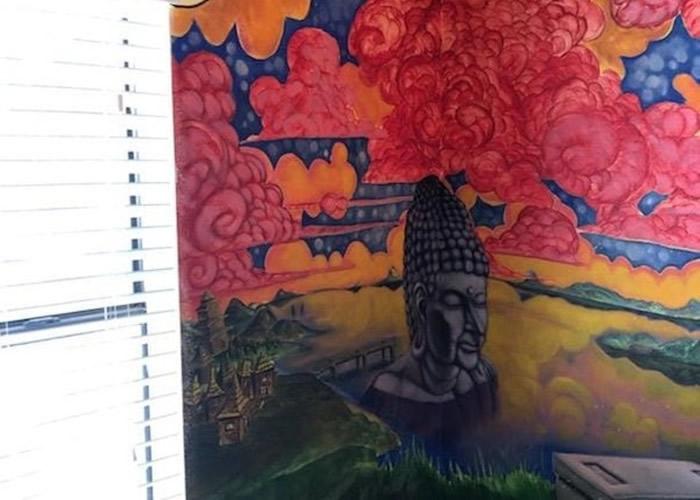 美国亚利桑那州卡萨格兰德淘气小猫抓烂墙纸意外揭出隐藏的精致壁画