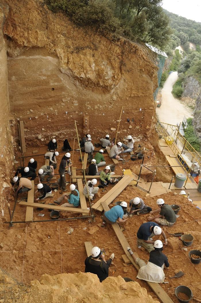Gran Dolina保留了更新世人类种群的记录
