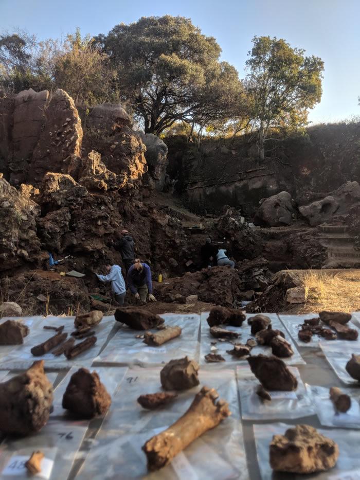 两百万年前南方古猿属、傍人属和最早直立人同时生活在南非的喀斯特地貌带