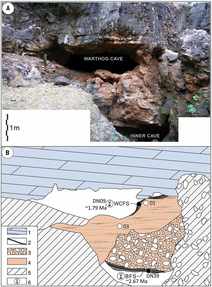 南非曾是3种古人类的家园 德里莫伦遗址出土200万年前非洲最古老直立人