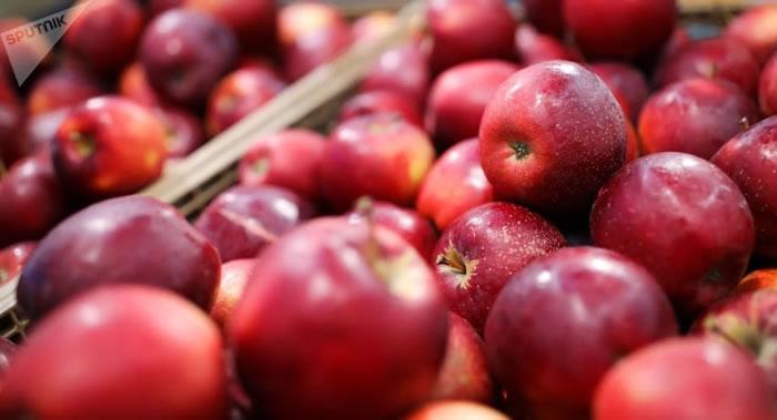 苹果果皮中提取的三萜酸可用来对抗多发性硬化症