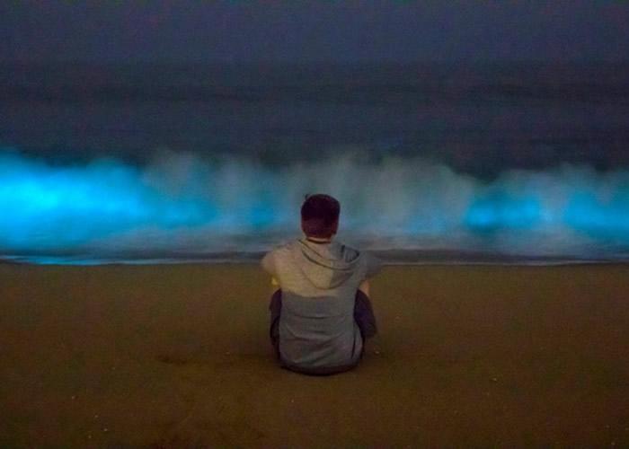 美国摄影师拍到加州纽波特港海滩出现藻类触发的生物发光现象——蓝光