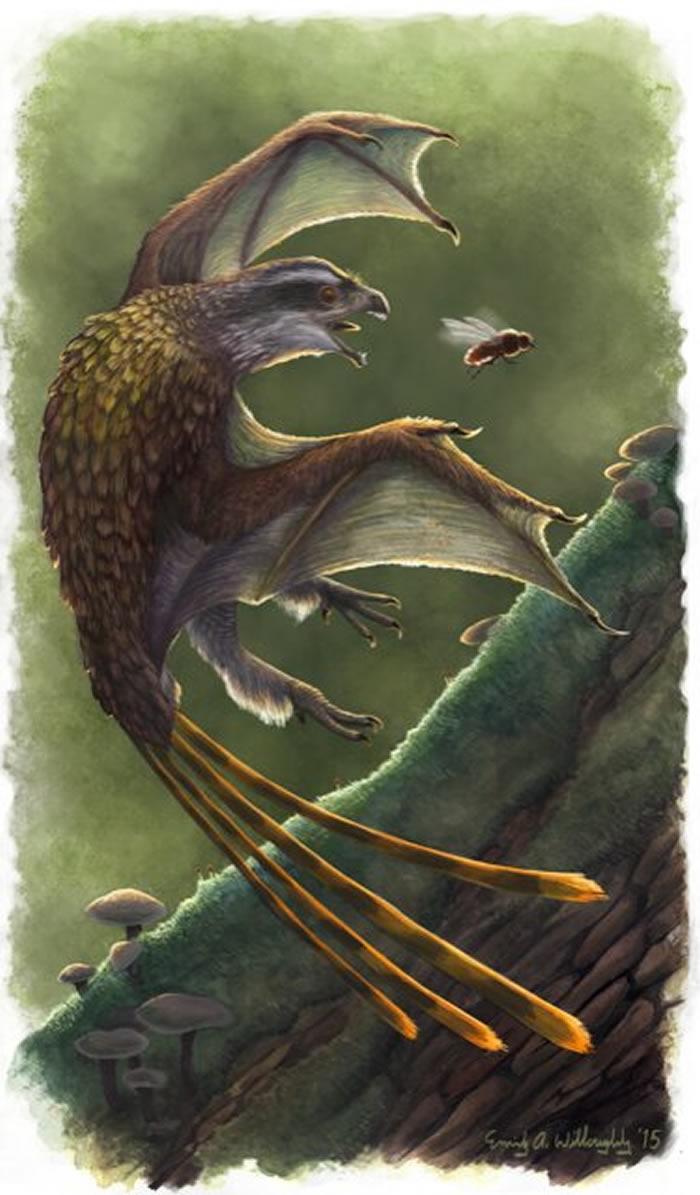 《生态和进化趋势》期刊:翼龙化石的生理学研究有助解决现代飞行技术界的很多难题