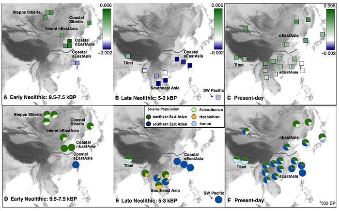 表明现今东亚人群混合有新石器时代早期的古南方人群成分和古北方人群成分情况。(A-C)新石器时代早期、新石器时代晚期及现今东亚和东南亚人群与东亚南北方古人群之间的