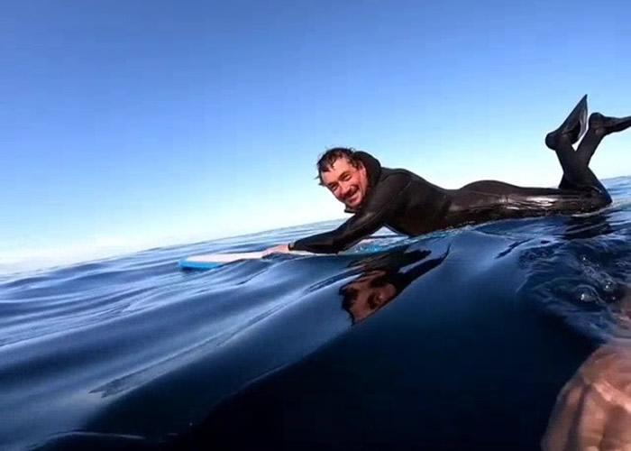爱尔兰4名男子前往西海岸克莱尔县海岸滑浪 巧遇20条姥鲨迎面游至