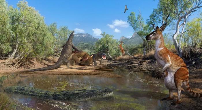 古生物学家追踪导致澳大利亚远古超大型袋熊、