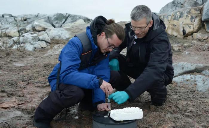 《Science of the Total Environment》:研究企鹅粪便跟土壤温室气体通量的关系
