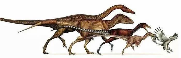 因爱飞上天的不只有梁祝 可能还有恐龙