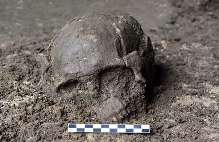 福建奇和洞约8400年前的2号个体头骨。