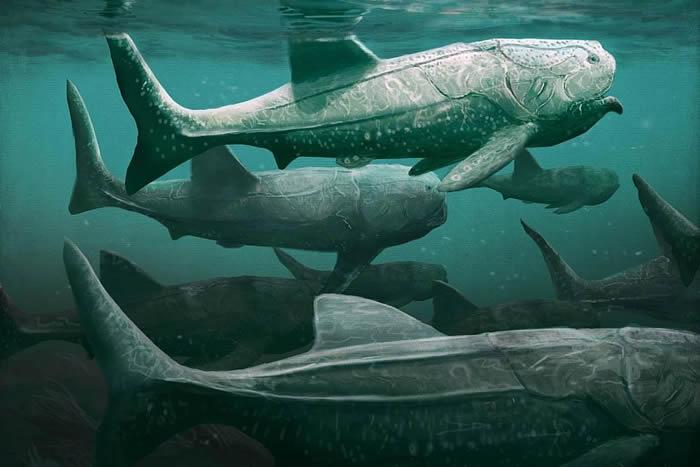 """3.8亿年前海洋中的巨型装甲鱼""""霸鱼""""的进食"""