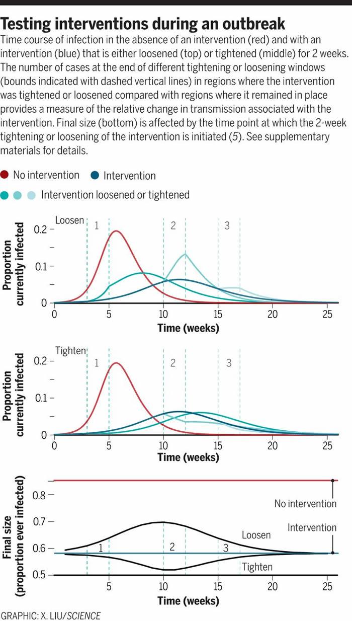 如何在COVID-19这样的疾病大流行中确定哪种干预措施最为有效